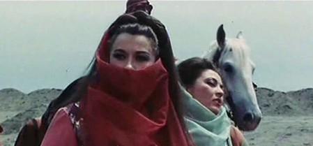 Rosalba Neri-Desert raiders