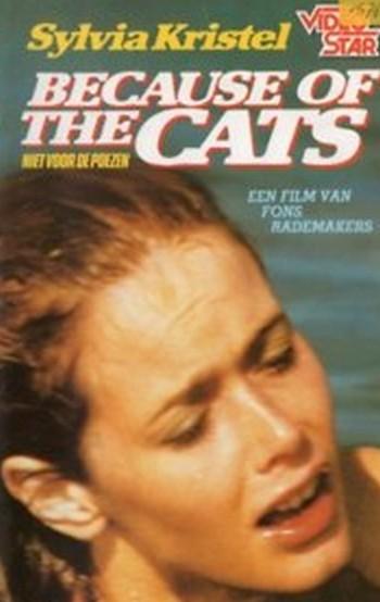 Perche i gatti locandina 1