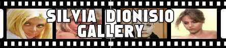 Silvia Dionisio- Banner gallery