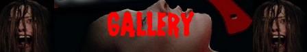 Non violentate Jennifer banner gallery