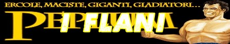 001 I peplum banner flano