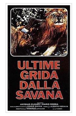 13 Ultime grida dalla savana locandina