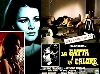 La gatta in calore lobby card 3