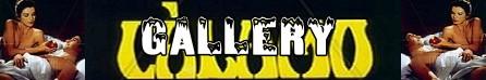 Calamo banner gallery