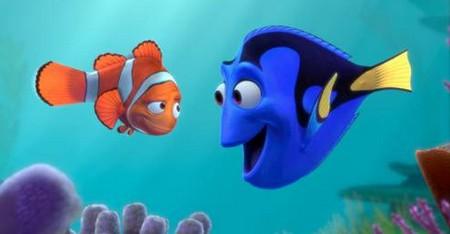 14 Alla ricerca di Nemo foto