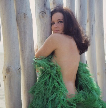 Lisa Gastoni Photobook 13