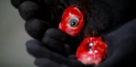 Gli occhi azzurri della bambola rotta 16