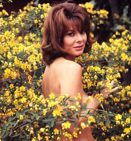 Anne Heywood Photobook 1