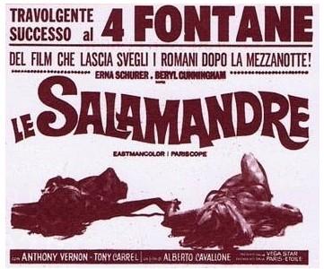Le salamandre flano