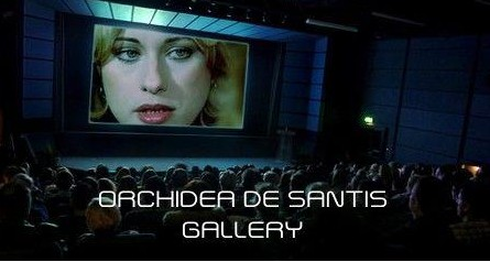 Orchidea De Santis banner gallery