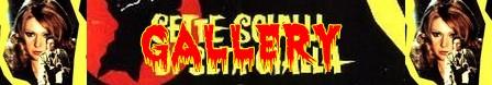 Sette scialli di seta gialla banner gallery