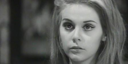 Silvia Dionisio Italiani è severamente proibito
