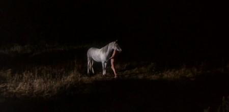 Equus 9