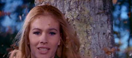 Evelyn Stewart Il dolce corpo di deborah