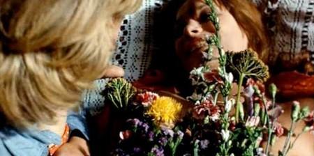 Fiore di carne 11