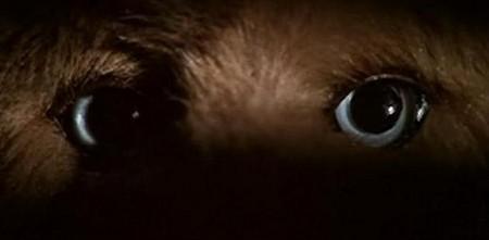Il gatto dagli occhi di giada 7