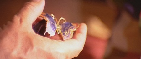 Una farfalla con le ali insanguinate 9