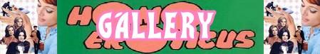 Homo eroticus banner gallery