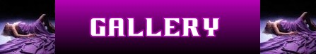 Il lenzuolo viola banner gallery