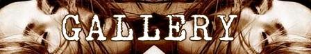 L'adolescente banner gallery