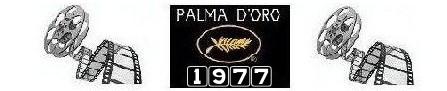 banner palma