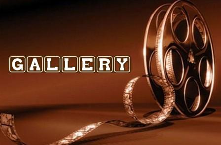 Banner film gallery