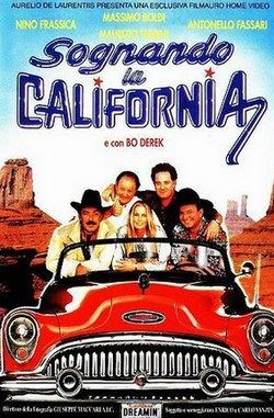 15 Sognando la California locandina