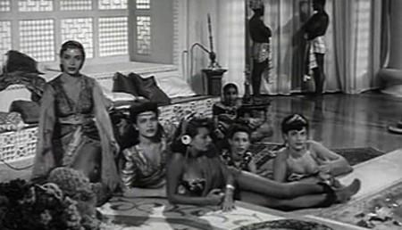 1 Sofia Loren Era lui si si