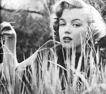 5 Marilyn Monroe pb 25