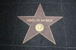 8 Monroe 10