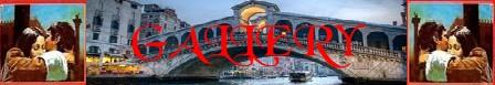A Venezia muore un'estate banner gallery