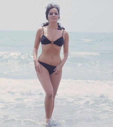 Lisa Gastoni Photobook 9