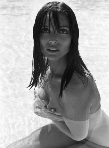 Elsa Martinelli foto 17