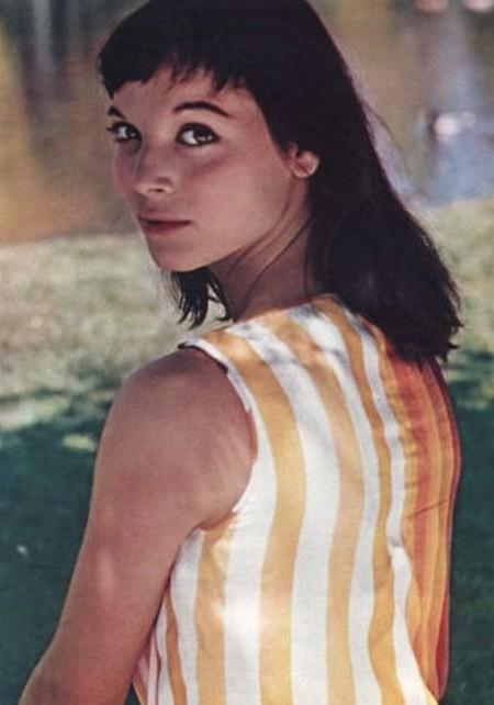 Elsa Martinelli foto 2