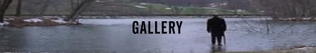 Oltre il giardino banner gallery