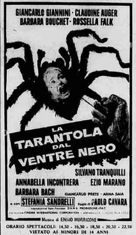 2-17-la-tarantola-dal-ventre-nero