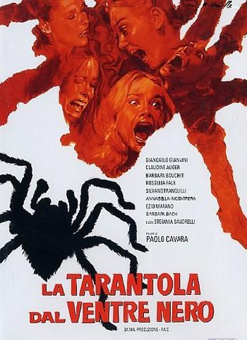 3-17-la-tarantola-dal-ventre-nero