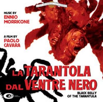 5-17-la-tarantola-dal-ventre-nero