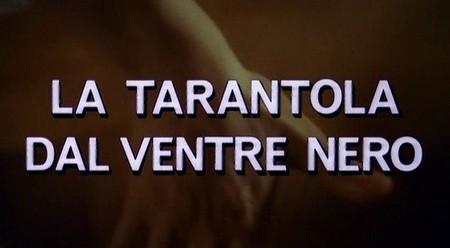 6-17-la-tarantola-dal-ventre-nero