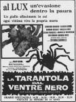 La tarantola dal ventrenero