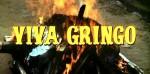 5-19 Viva Gringo