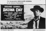 4-8 Arizona Colt