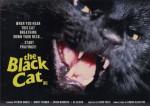 3-4 Black Cat (Gattonero)