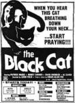 4-4 Black Cat (Gattonero)