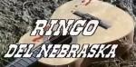 5-12 Ringo delNebraska